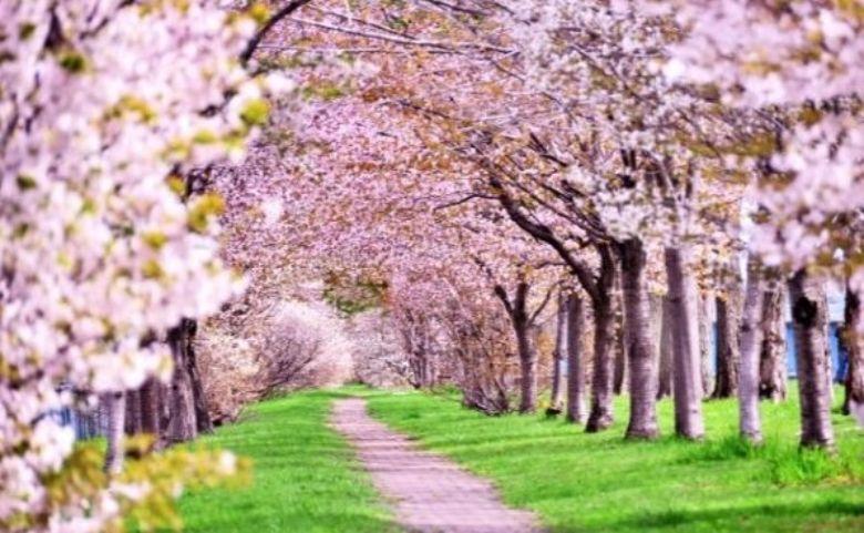メルカリに出品する商品の季節感を重視する
