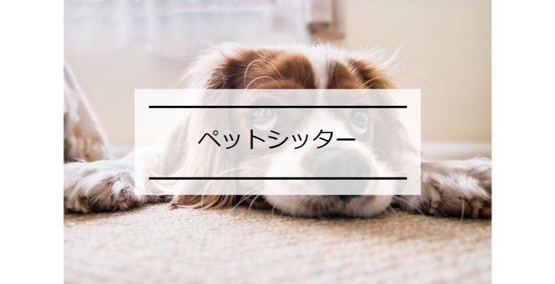 武内_新規_115_20